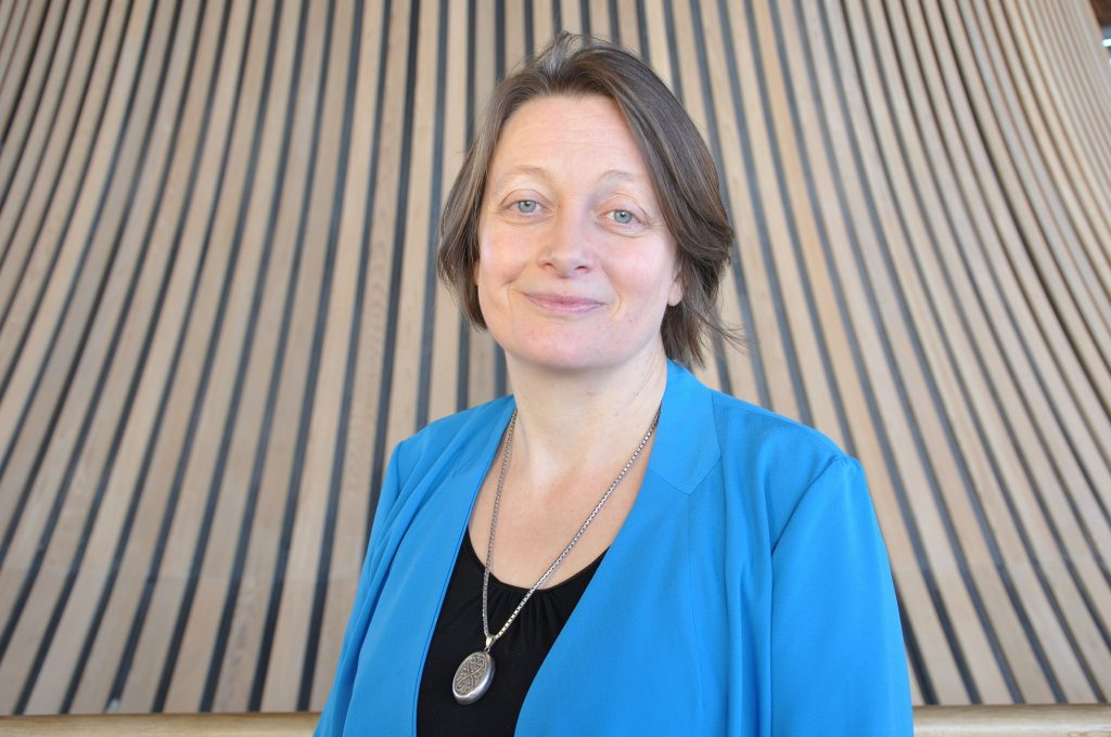 Sally Holland, the Children's Commissioner for Wales.